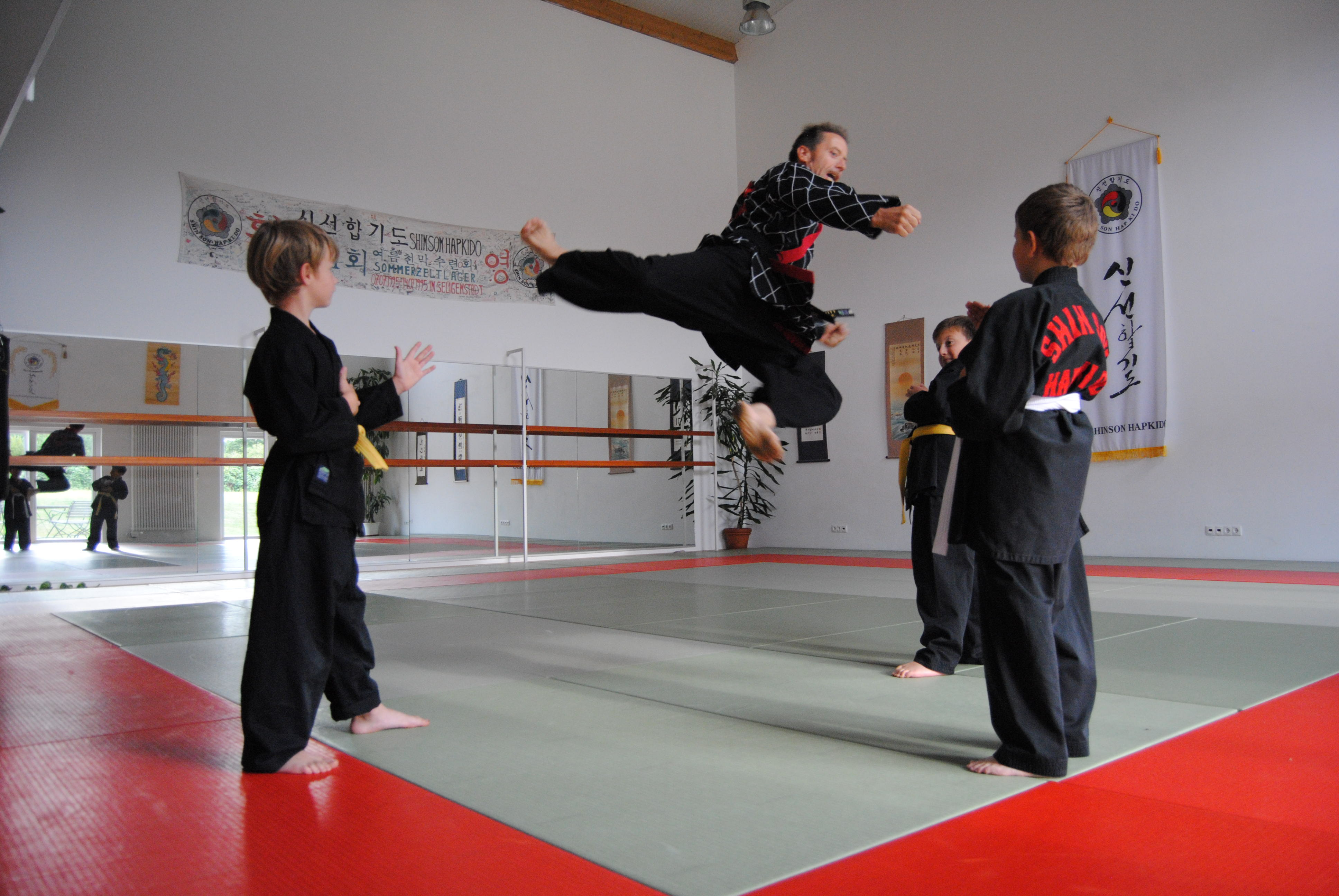 Hapkido Training